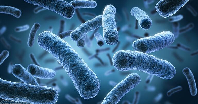 Microbiota y embarazo