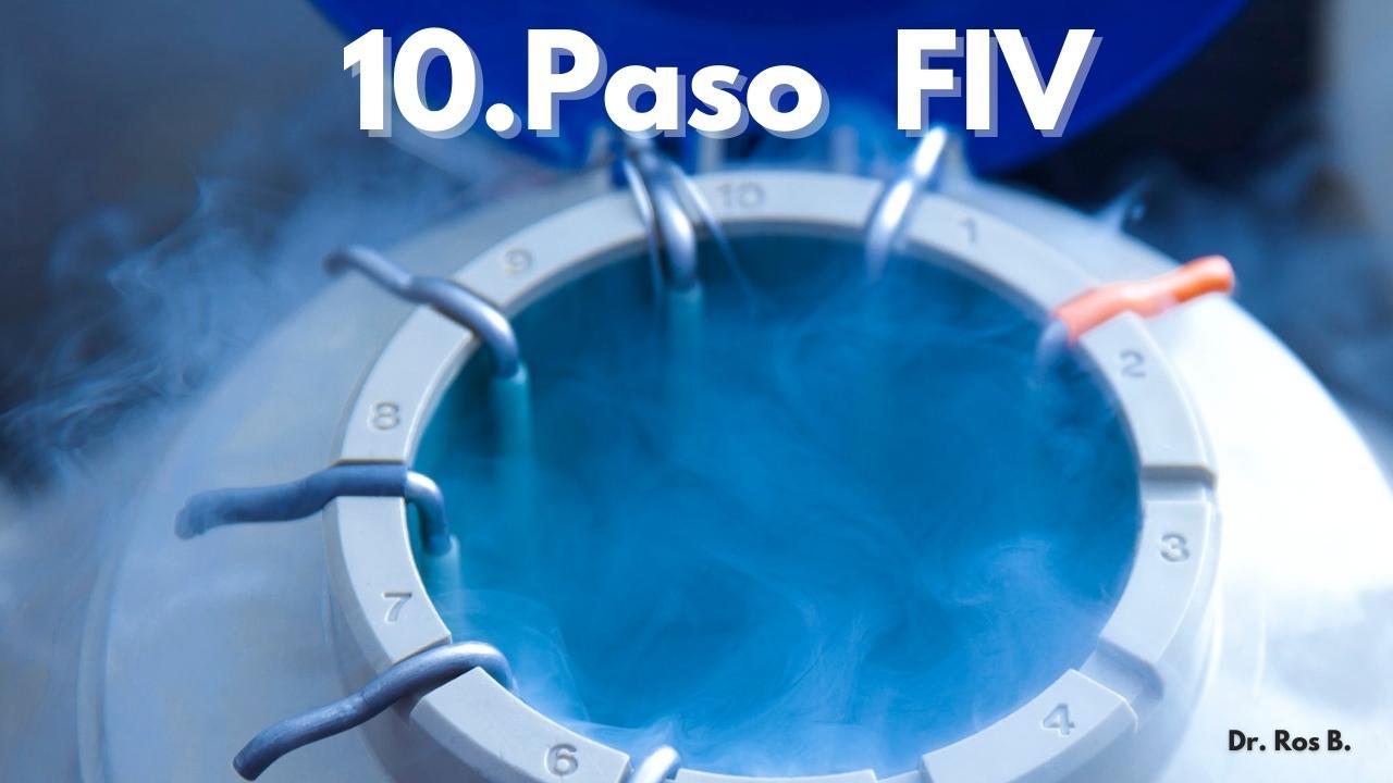 proceso 10 paso fiv embriones congelados